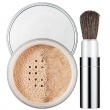 Blended Face Powder and Brush 03