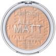 All Matt Plus Shine Control Powder 025