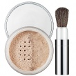 Blended Face Powder and Brush 08