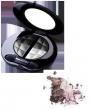 Color Vision Quattro Eyeshadow 110