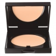 Sheer Finish Pressed Powder 05